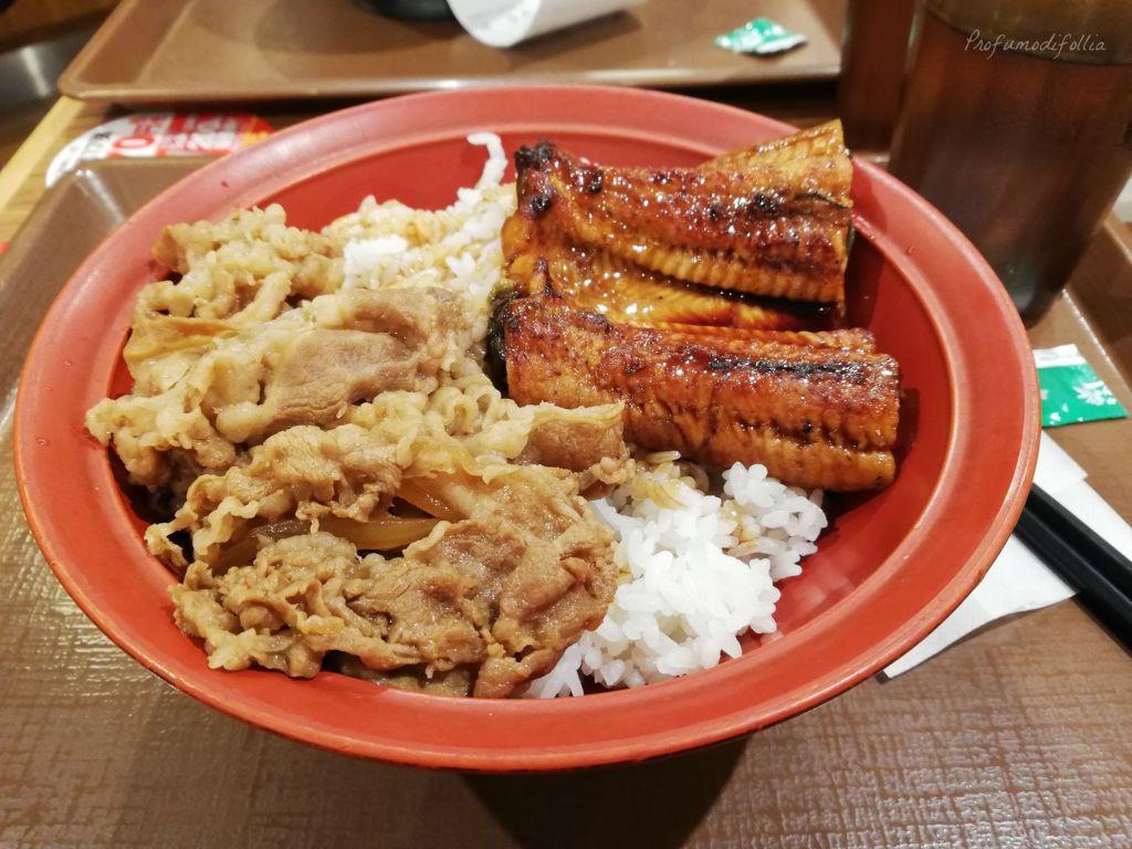 Piatto di riso, anguilla in salsa di soia e maiale [Una settimana in Giappone: Osaka]