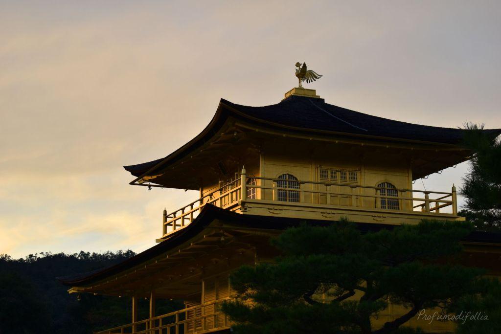 Visita ad Arashiyama: il Kinkaku-ji al tramonto
