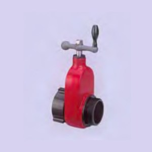GATE-HOSE-VALVES-(FxM)
