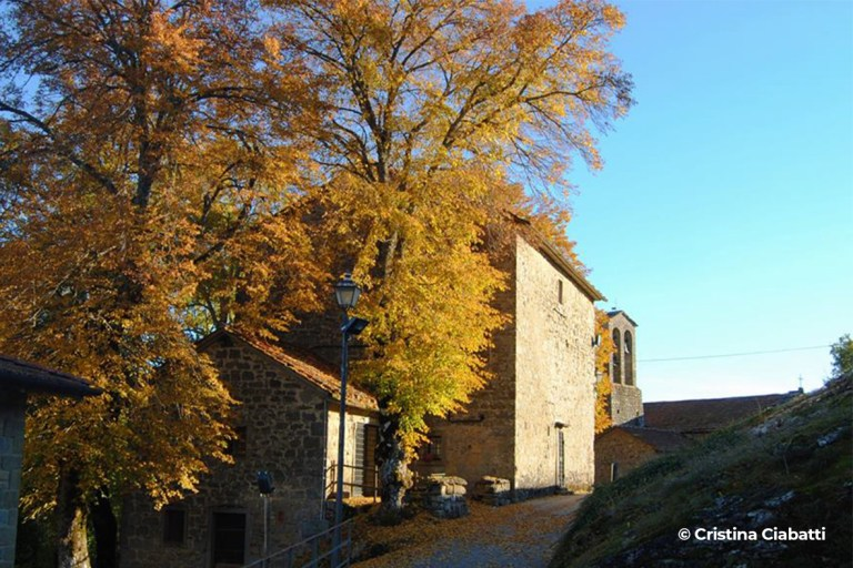 Chiesa di San Michele - Progettoideal chiusi della verna (©cristina ciabatti)
