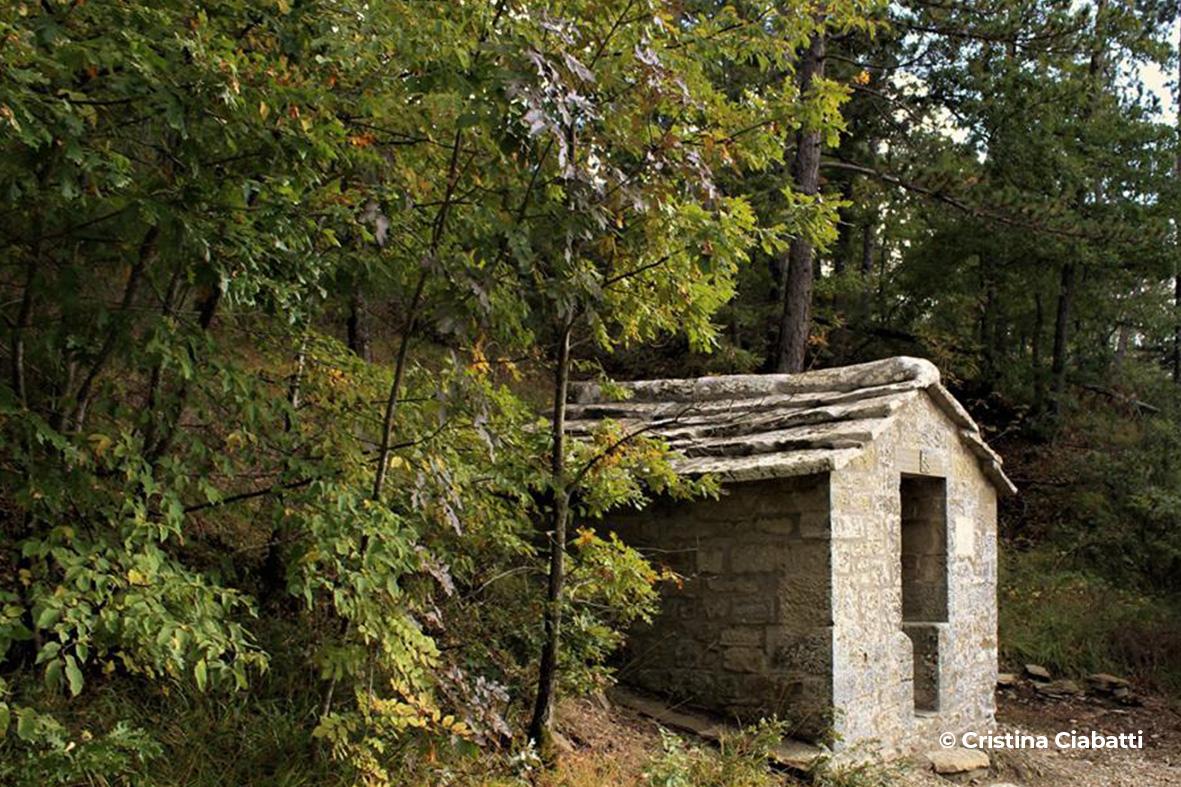 Fonte di San Francesco - Progettoideal chiusi della verna (©cristina ciabatti)