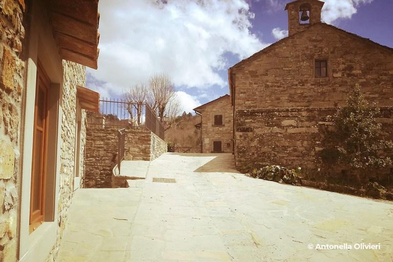 Loc. Vezzano - Progettoidea chiusi della verna (©antonella olivieri)