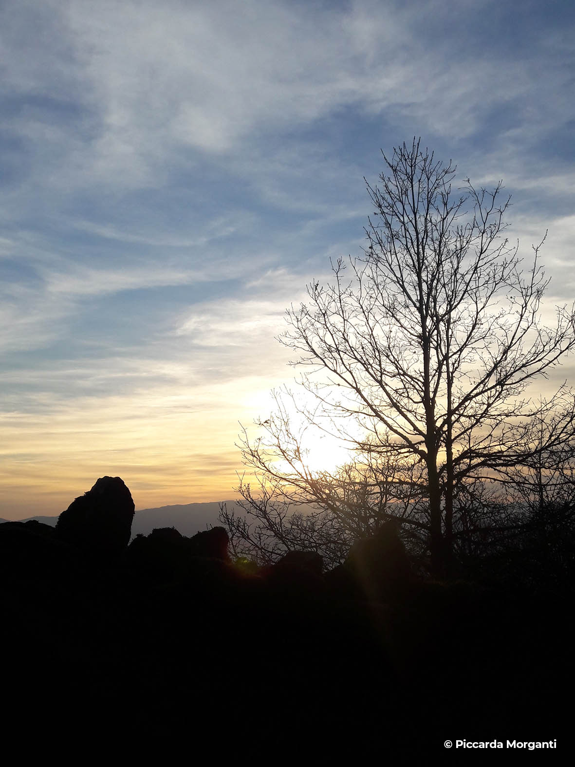 Sentieri naturalistici - Progettoidea chiusi della verna (©piccarda morganti)5