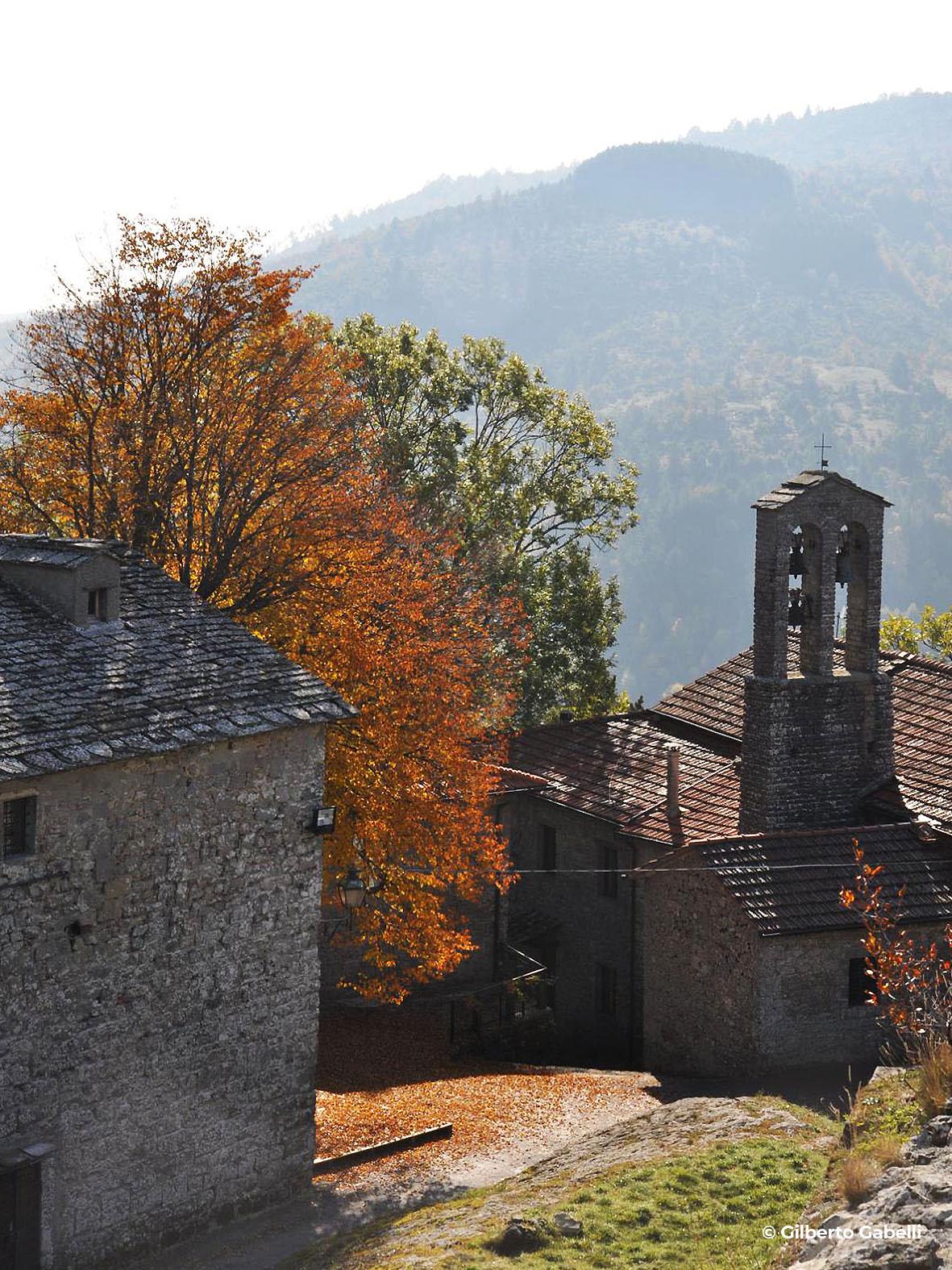 progettoidea chiusi della verna - podesteria di michelangelo (©gilberto gabelli)1