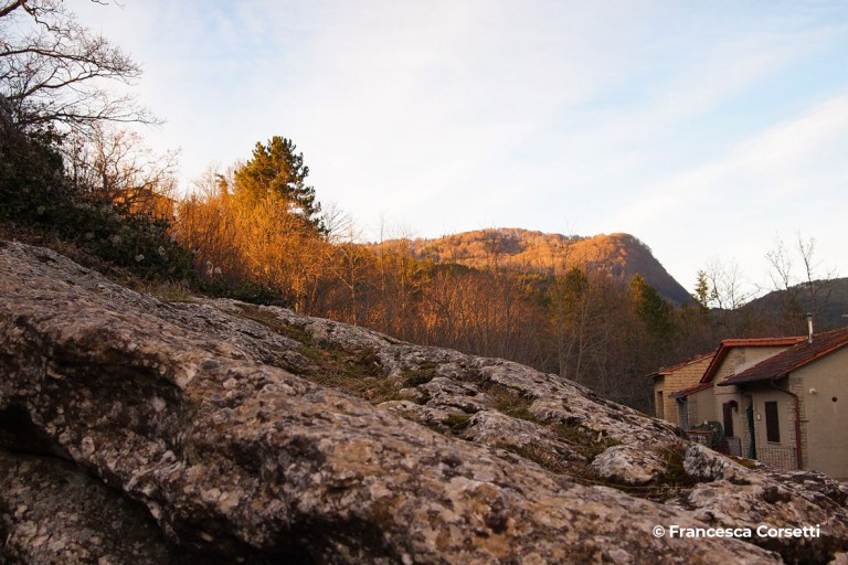 progettoidea chiusi della verna - roccia di adamo (©francesca corsetti)