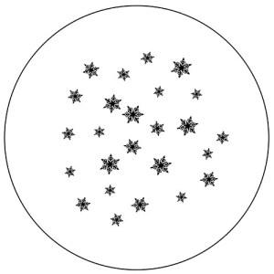 Snowflakes #4