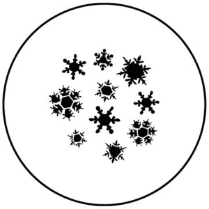 Snowflakes #5