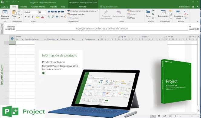 Microsoft Project Professional