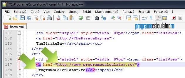 2-personalizare_site_uri_pagina_de_start