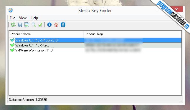 SterJo Key Finder : program recuperarea licentelor