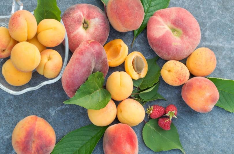 Profitez de l'été pour introduire les fruits crus !