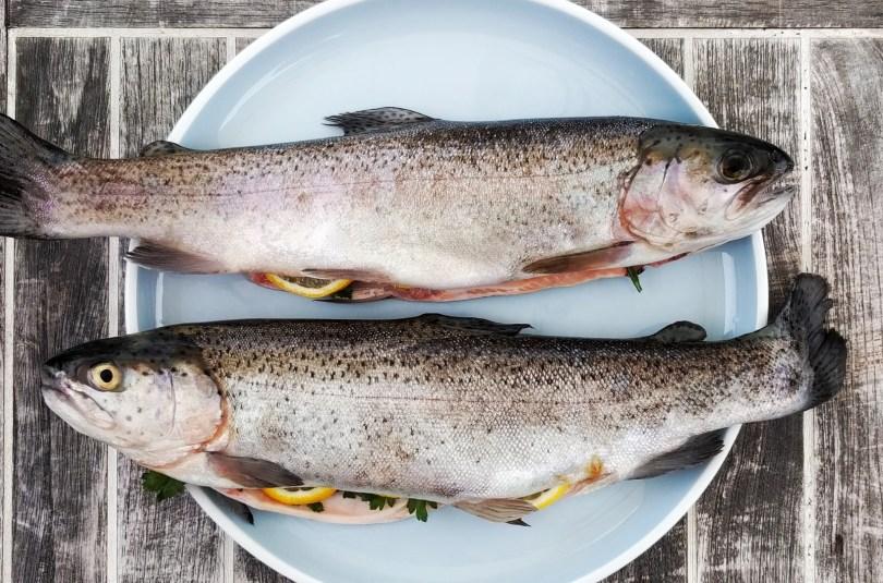 A partir de quel âge donner du poisson à un bébé ?