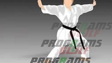 Photo of تحميل تطبيق Learn Kung Fu مجانا لتعلم أصول لعبة الكونغ فو الأولمبية