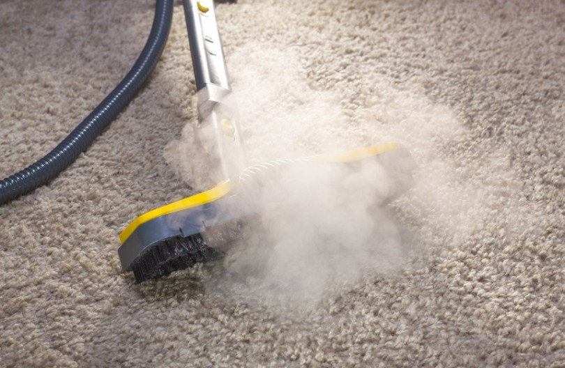 Is Your Dirty Carpet Damaging Your Health    Progreencarpet Is Your Dirty Carpet Damaging Your Health  cheap carpet cleaners