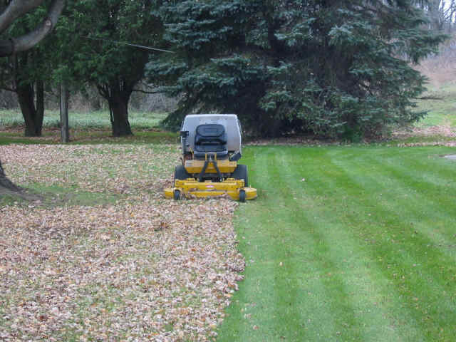 Mulching Leaves Mower