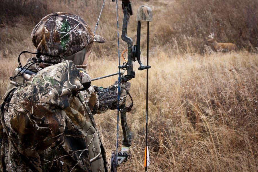 Todo lo que necesitas saber sobre cómo cazar ciervos