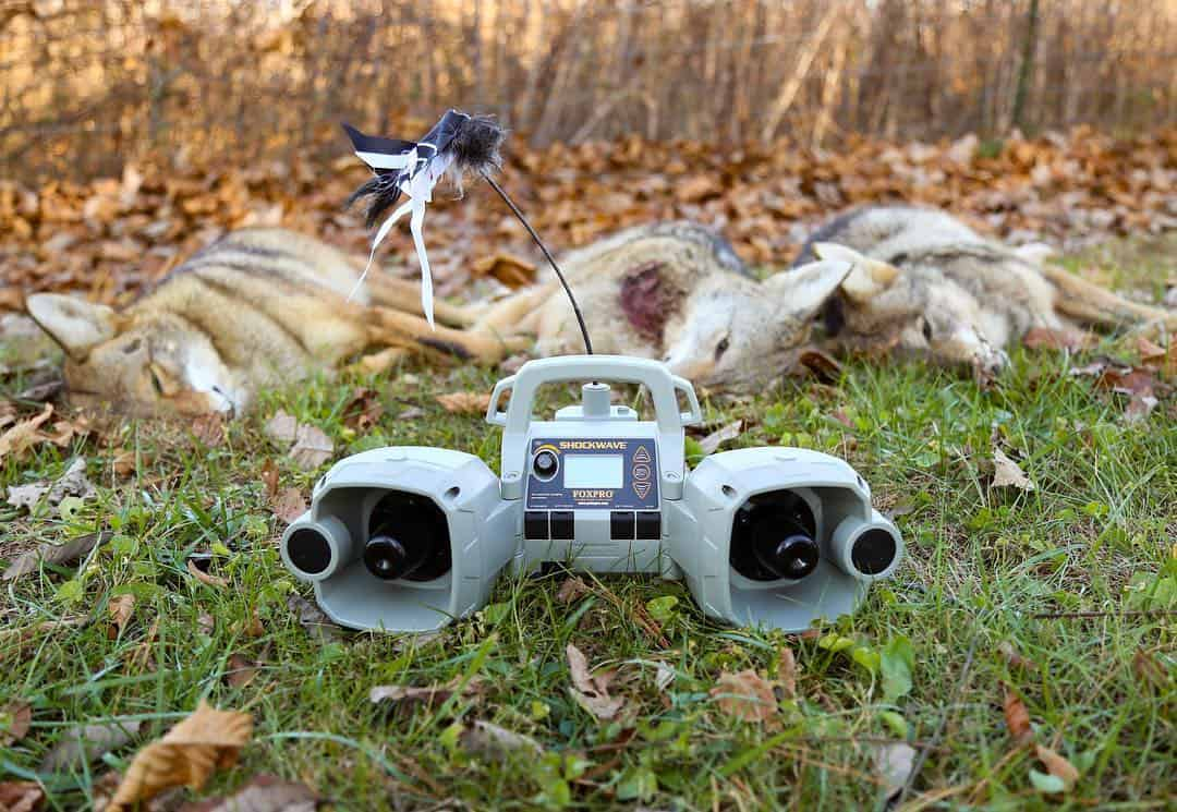Best Coyote Calls Reviews - Electronic Game Calls - proHuntingHacks