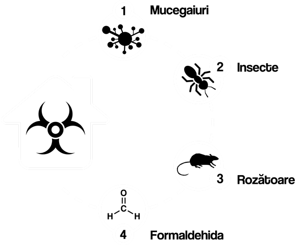 proiecte-case-de-lemn-biohazard