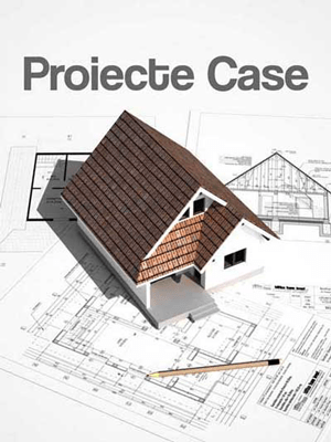 Trilitica.Ro/Proiecte-Case/