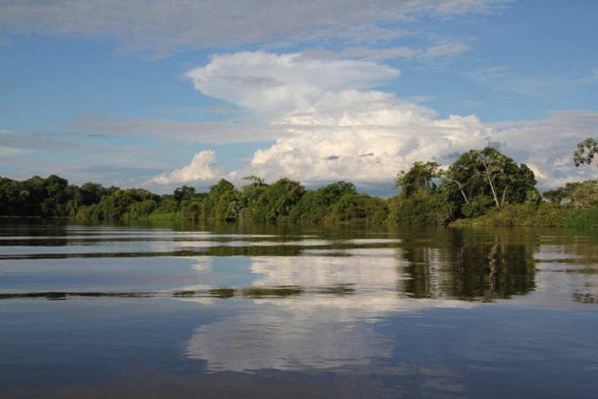 Pantanal, Brazil1