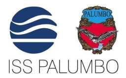 ISS-PALUMBO-Logo