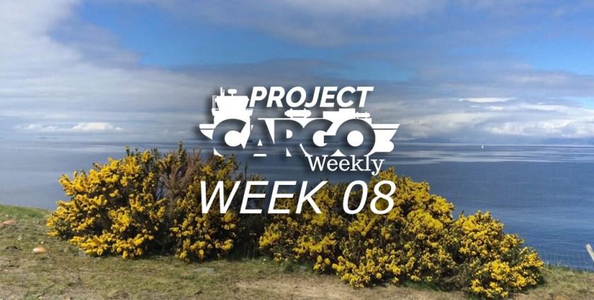 week08_header