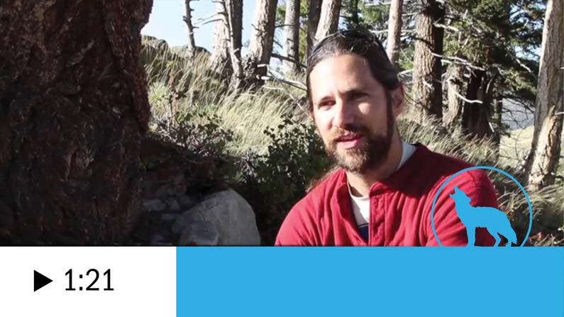 John Vucetich videos thumbnail