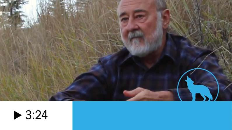 Paul Paquet videos thumbnail