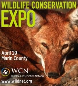 San Rafael, CA: Wildlife Conservation Expo Schedule 2017 @ Dominican University, Angelico Hall | San Rafael | California | United States