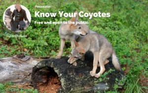 Eastman, NH: Know Your Coyotes @ Eastman Ecology Camp | Grantham | New Hampshire | United States