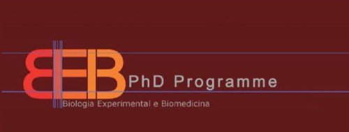 PhD course at Coimbra University in Metabolism and Disease: Causes and Consequences of Non-Alcoholic Fatty Liver Disease (NAFLD)