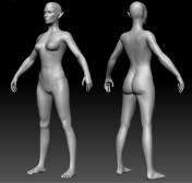 3D model of the front and back of female elf