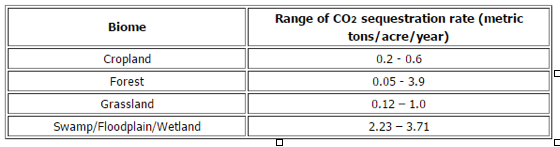 Rate of CO2 sequestration (Mitsch et al., 2013).