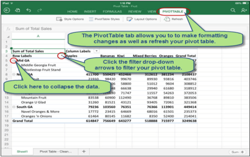 Using pivot table in advanced excel to summarize large set of data