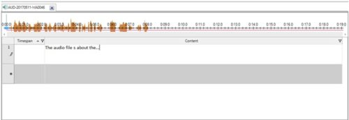 detail view of audio files in Nvivo