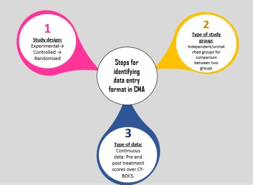 Figure 1: Steps for identifying appropriate data entry formats in CMA