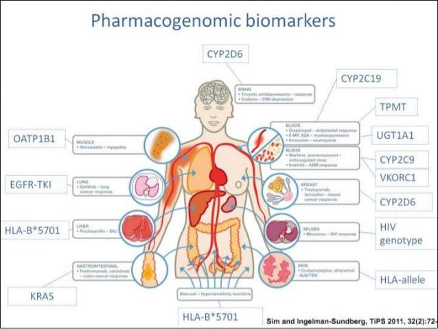 Common Bio markers