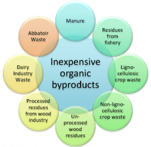 By-products for bioremediation