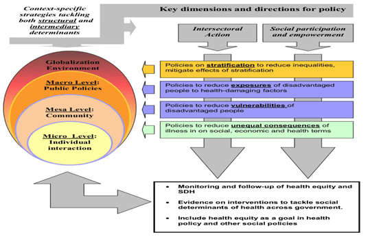 Framework for the policy development by taking into account the social determinants (Solar & Irwin, 2010)
