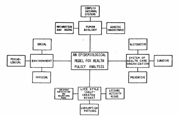 Health policy analysis and implementation model (World Health Organization, 2009)