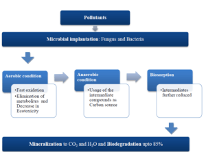 Flowchart of the common microbial action which can be used for the pharmaceutical pollution