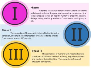 Different phases (I-III) for pharmaceutical product development (PhRMA, 2017)