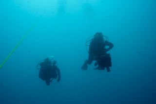 diving down in palau