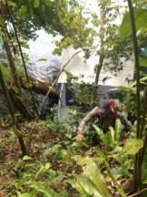 steep jungle hikes in palau with bentprop