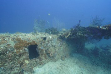 A World War II era B-25 Bomber, documented by Project Recover, rests on the sea floor in the waters of Papua New Guinea.