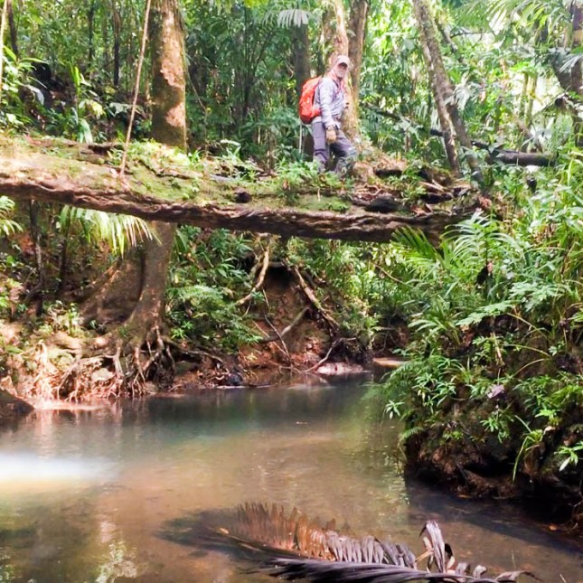 Pat Scannon trekking through the jungles of Palau during WWII POW search