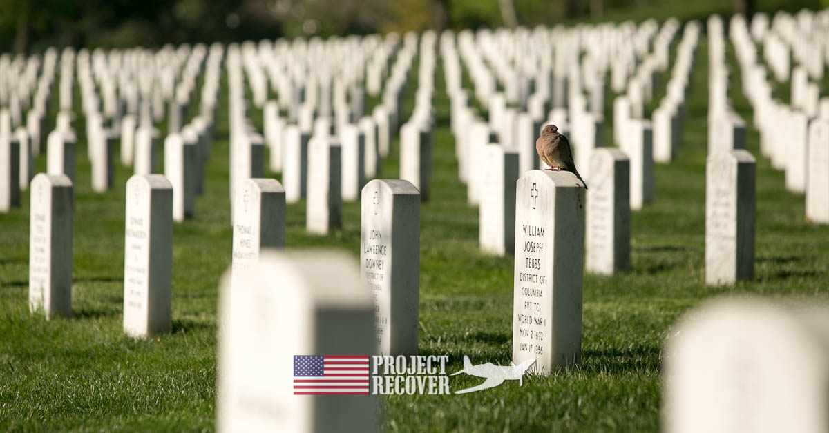 Arlington Cemetery with dove on gravestone - learn about MIA Research - Bentprop. Project recover. photo by harry parker photography