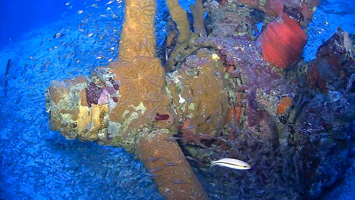 Propeller of WWII aircraft in Chuuk found by Project Recover