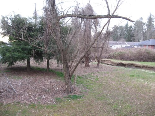 Project Small House: Clearing the Back Yard – Before & After Photos Kudzu to Apple Trees