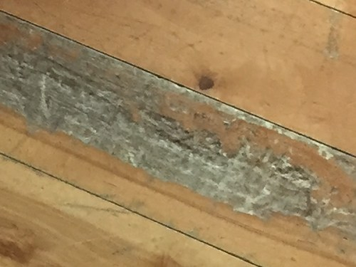 Project Small House - Refinishing Hardwood Floor: Some of the wood was like cork, so soft you could push it out with a fingernail.